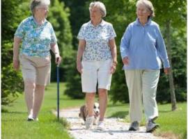 Đi bộ có lợi cho người suy giãn tĩnh mạch