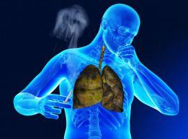 3 cơ quan trong cơ thể bị ảnh hưởng nặng nề nhất bởi thuốc lá