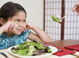 Hỏi: Bé nhà mình rất lười ăn đặc biệt là rau củ. Có biện pháp nào giúp bé ăn rau củ nhiều không ạ?