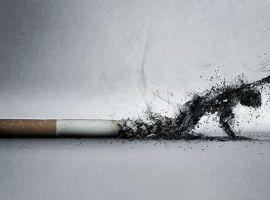 Thuốc lá tấn công cơ thể bạn thế nào?