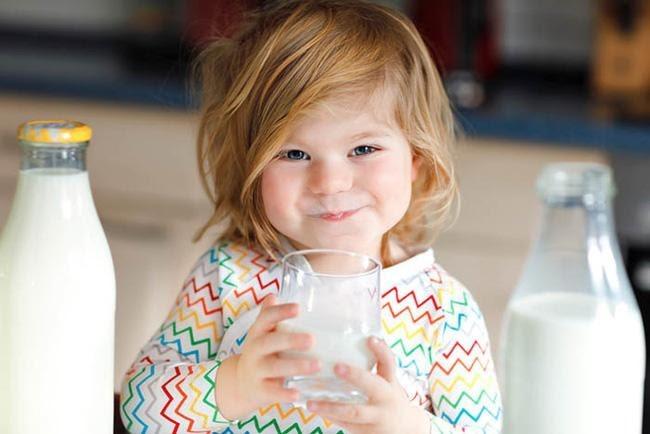 Những lợi ích quan trọng của sữa tươi