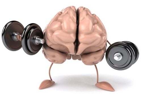 Nguy cơ teo não vì suy giảm trí nhớ