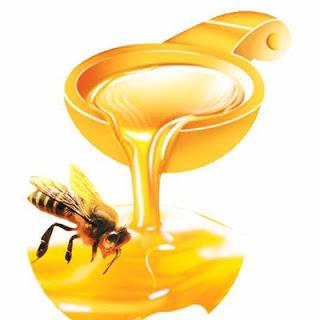 BoniSeal được làm từ sữa ong chúa